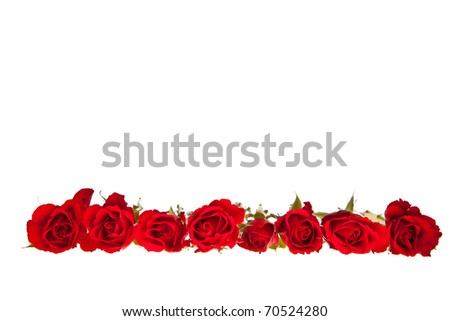 Red roses on white isolated background valentine's day - stock photo