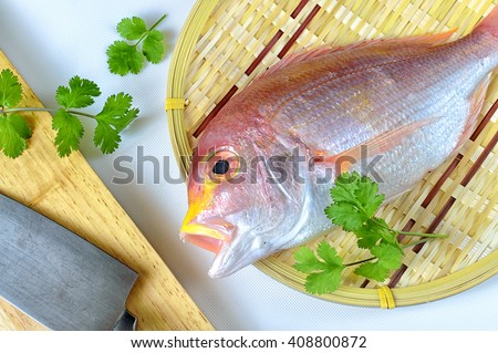 Red sea bream. In Japan, it is extensively raised in the farms in Ehime, Mie and Saga Prefectures. - stock photo