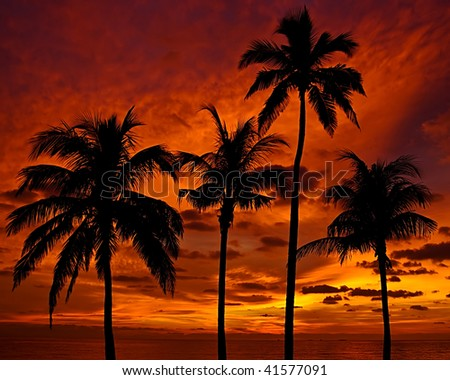 Red Sky at Dawn - stock photo