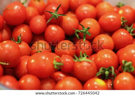 Red small fresh cherry tomatoes with the water drops