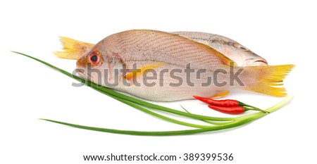 red snapper fish with chili peppers and onion leaf isolated on white  - stock photo