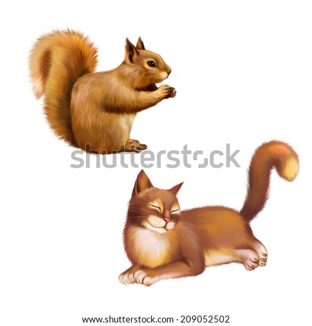 Red Squirrel (Sciurus Vulgaris) eating, side view, isolated on white background - stock photo