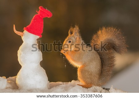 red squirrel with a snowman