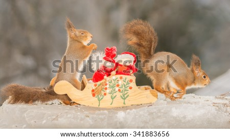 red squirrels standing with a sleigh and christmas dolls on ice  - stock photo