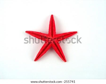 red star fish - stock photo
