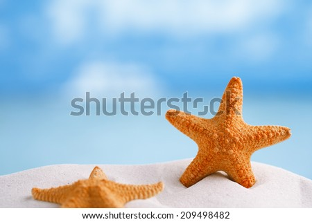 red starfish with ocean, beach, sky and seascape, shallow dof - stock photo