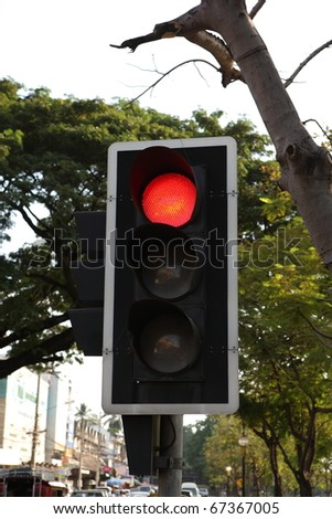 red stoplight transort with green tree - stock photo