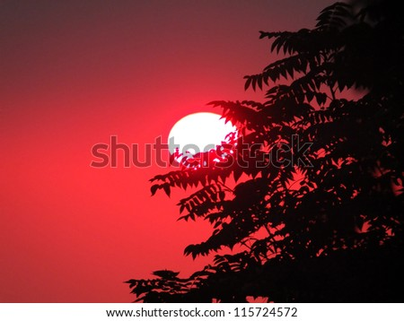 Red sunset - stock photo
