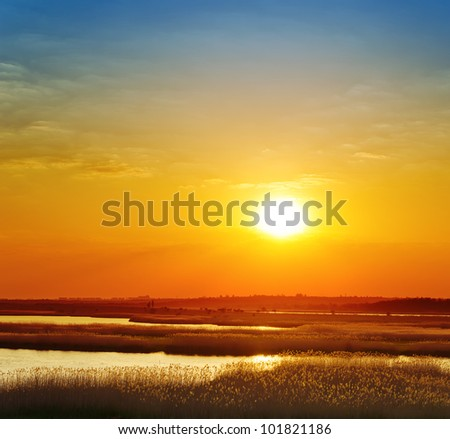 red sunset over river with canes - stock photo