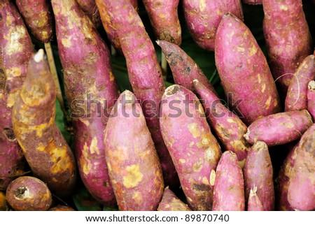 Red sweet potatoes - stock photo