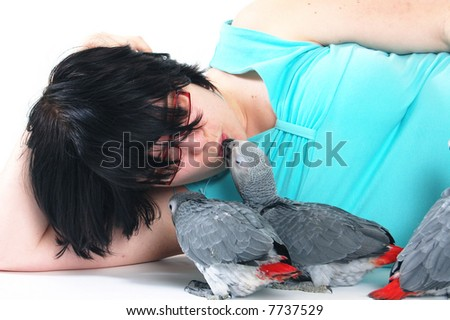 red tale parrot isolated on white kissing with female - stock photo