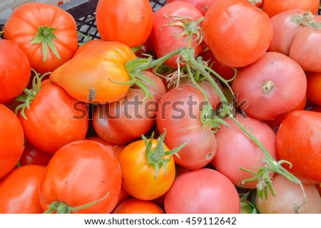 red tomatoes at the market
