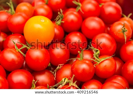 red tomatoes with an orange tomato