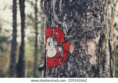 Red trail marker on the tree - stock photo