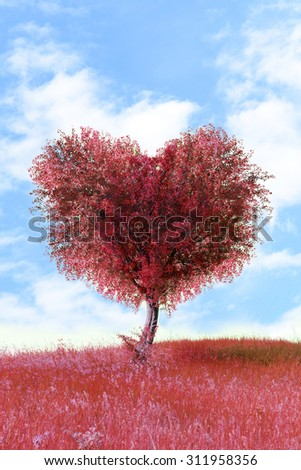Red tree in heart shape, outdoors - stock photo