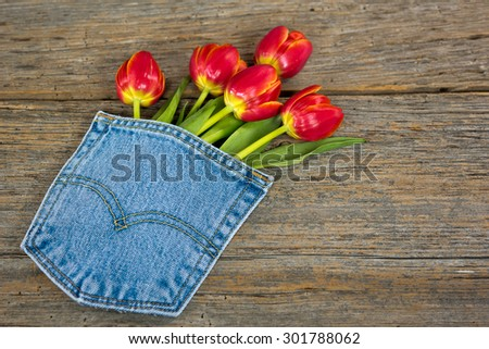 red tulip bouquet in blue jean pocket on rustic barn wood - stock photo