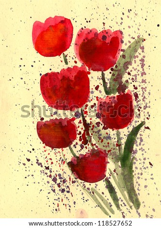 Red tulip painted in watercolor  isolated on white - stock photo