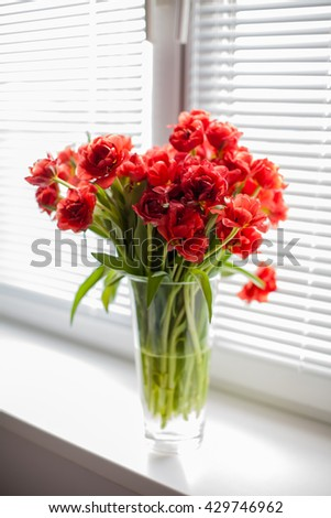Red tulips in a glass vase on the windowsill