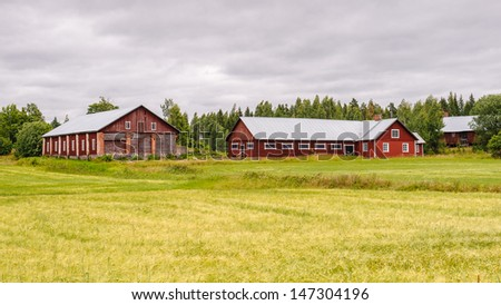 Red typical building stays in the field in Finland
