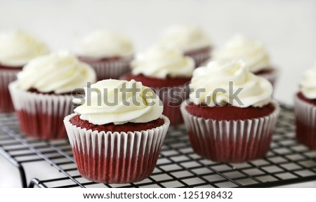 Red velvet cupcakes with cream cheese frosting on a rack - stock photo