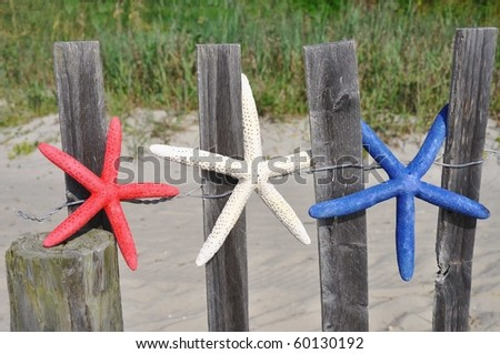 Red, white and blue starfish on a beach fence - stock photo