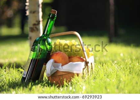 Red wine and picnic basket with fruits - stock photo
