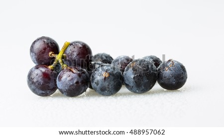 Red wine grapes isolated on white bright background / blue grapes/ wine grapes.