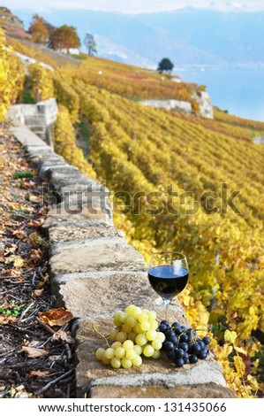 Red wine on the terrace vineyard in Lavaux region, Switzerland