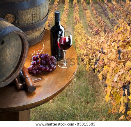 red wine with barrel on vineyard - stock photo
