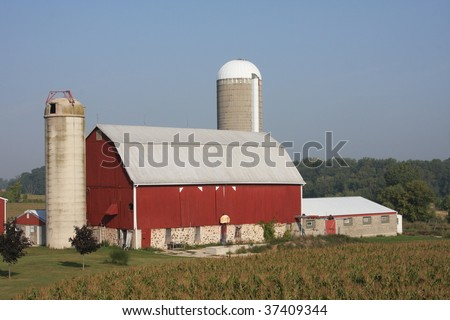 red Wisconsin dairy barn and corn field - stock photo