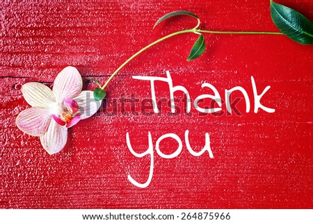 red wood background - thank you - stock photo