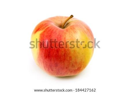 red-yellow Apple - stock photo