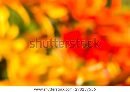 red, yellow, orange, green defocused bokeh flowers in abstract background - stock photo
