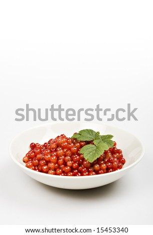 redcurrant berries in a bowl on white surface - stock photo