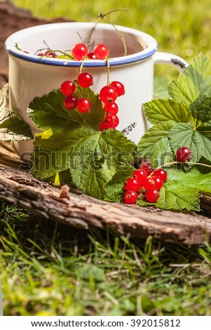 Redcurrant in a ceramic container. Selective focus.