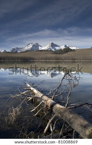 Redfish Lake Vertical Composition Log in Water Sawtooth Mountain Range Idaho - stock photo