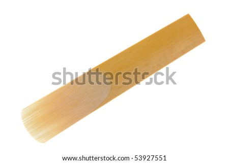Reed for clarinet isolated on a white background - stock photo
