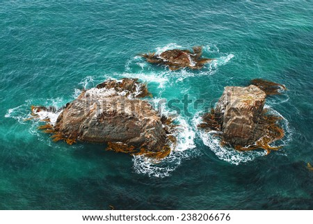 Reefs on the coast of New Zealand