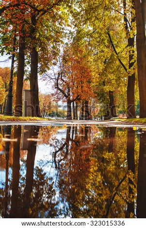 reflected in a pool of autumn park - stock photo