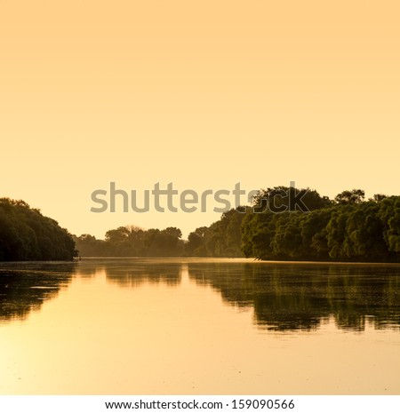 Reflection in river at summer forest - stock photo
