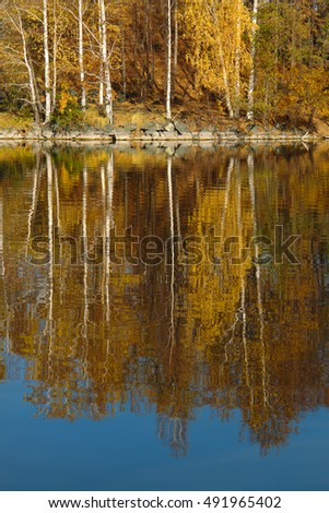 Reflection of autumn trees in the water.Reserved places at the Gold Lake South Ural.