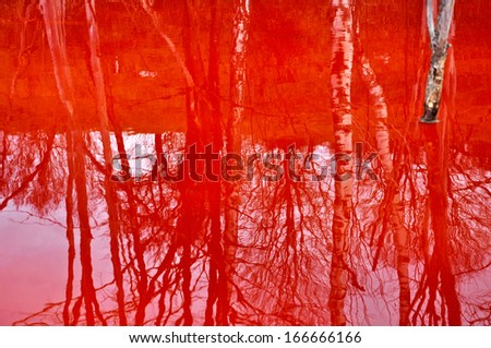 Reflection of dead trees in a contaminated lake water  - stock photo