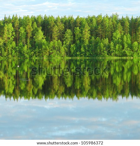Reflection of forest in lake - stock photo