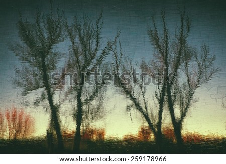 Reflection of leafless trees of winter on a river stream - stock photo