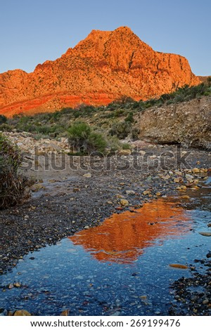 reflection of Red Rocks mountain lit up by morning light in a small stream - stock photo