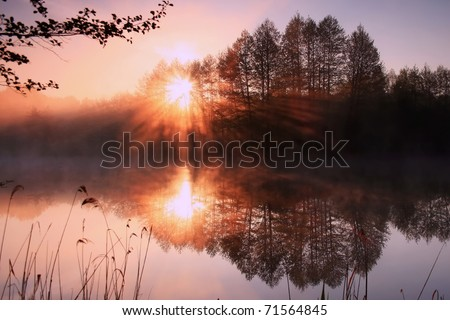 Reflection of the first rays of the sun in a misty forest lake - stock photo
