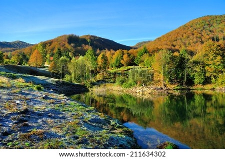 Reflection of the quiet lake - stock photo