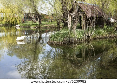 reflection of trees and hut on lake in spring