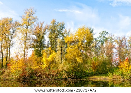 Reflection of trees in the water in Autumn - stock photo