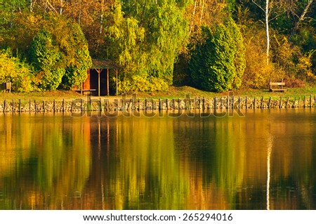 Reflection tree lake park autumn - stock photo